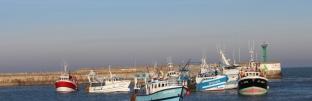 05-12-2016-chalutiers-coquillards-rentrant-au-port-avant-port-18